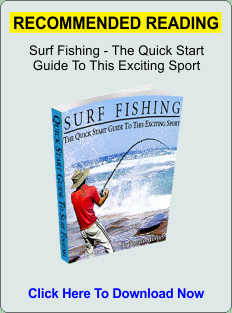 Surf Fishing Guide